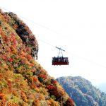 雲仙の紅葉。ロープウェイや登山で楽しむ方法。ライトアップもあり!