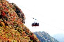 雲仙ロープウェイと紅葉