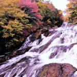 奥日光の紅葉。混雑を避け切込湖・刈込湖や金精峠でゆっくり紅葉狩り