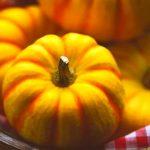 プッチーニかぼちゃの食べ方・育て方。ハロウィン用に入手するには?