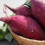 紅はるか、安納いも、鳴門金時、紅あずま…サツマイモ品種を徹底解説