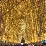 光のページェントの穴場。仙台、新潟、高崎、京都など、どこが良い?