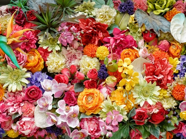 切り花(生花)の名前と種類