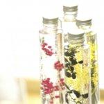 ハーバリウムの浮かない作り方。オイルと花材を選ぶポイントは?