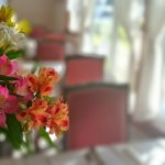 切り花の長持ちする種類と、水替え・水揚げ・切戻しなどお世話のコツ
