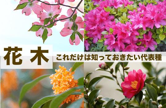 花木の種類