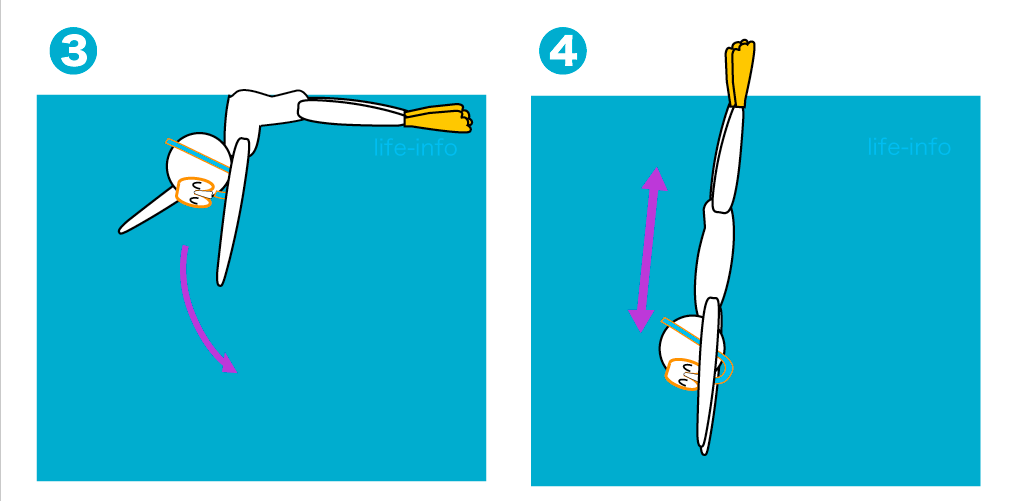 ジャックナイフ式で潜水するコツ2