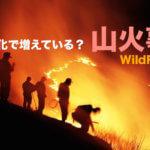 山火事は熱波や温暖化が原因で増えているか? 山火事と森林の関係。