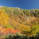 千畳敷カール紅葉の時期。駒ヶ岳ロープウェイで見ごろの混雑を避けるコツ