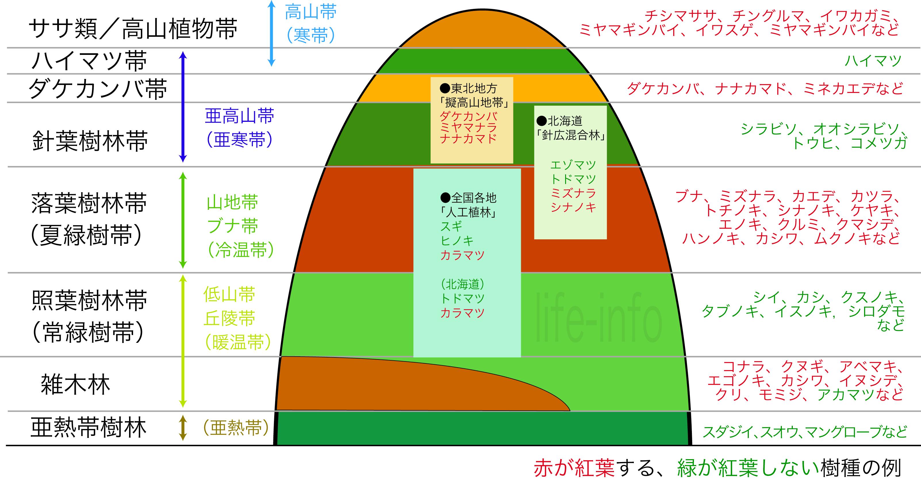 日本山の森林植生分布と紅葉する樹種