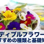 エディブルフラワーのおすすめ種類と味は? 食べられる花30種の特徴や料理法と、食べてはいけない花リスト。