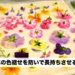 押し花の色褪せを防ぎ長持ちさせる保存・保管方法は?